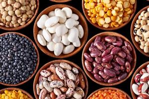 Содержание белка в бобовых