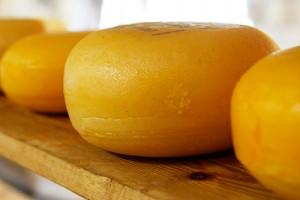 Сыр, сыр, сыр! Виды сыров.